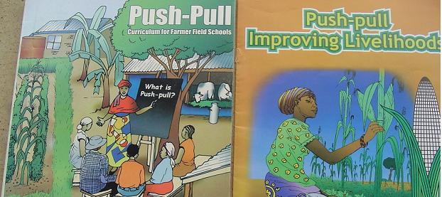 Ecomic of Push-Pull